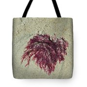 Red Seaweed Tote Bag