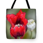 Red Sensation Tote Bag