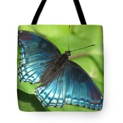 Red-spotted Purple Tote Bag