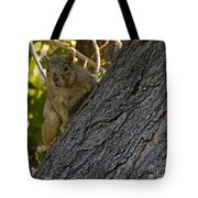 Red Squirrel   #1733 Tote Bag