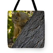 Red Squirrel    #1736 Tote Bag