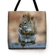 Red Squirrel On Patio Chair II Tote Bag