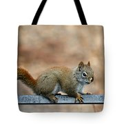 Red Squirrel On Patio Chair Tote Bag
