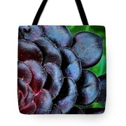 Red Succulents Tote Bag