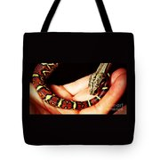 Red Tail Baby Boa - Snake - Pet Tote Bag