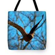 Red Tail Hawk In Flight Tote Bag