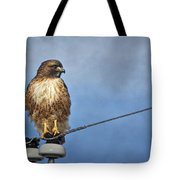 Red Tail On Watch Tote Bag