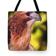 Red Tailed Hawk - 59 Tote Bag