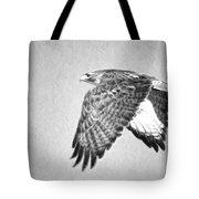 Red Tailed Hawk II Tote Bag