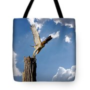 Red-tailed Hawk Perch Series 5 Tote Bag