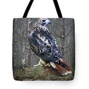 Red Tailed Hawk Perched On A Rock Tote Bag