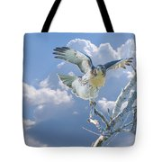 Red-tailed Hawk Pirouette Pose Tote Bag