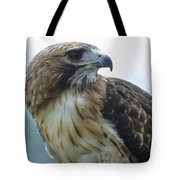 Red-tailed Hawk Profile Tote Bag