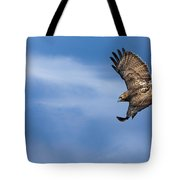 Red Tailed Hawk Soaring Tote Bag