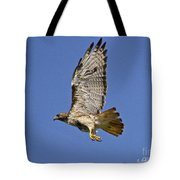 Red-tailed Hawk Takeoff Tote Bag
