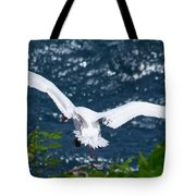 Red Tailed Tropic Bird Tote Bag