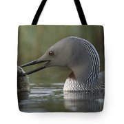 Red-throated Loon With Fish Alaska Tote Bag