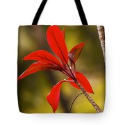 Red Ti Leaves Tote Bag