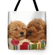 Red Toy Poodle Puppies Tote Bag