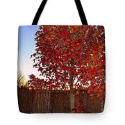 Red Tree At Sunset Tote Bag