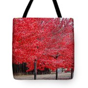 Red Tree Line Tote Bag