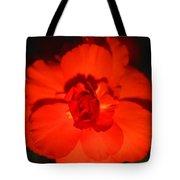 Red Tuberous Begonia Tote Bag