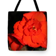 Red Tuberous Begonia Flower Tote Bag