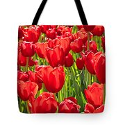 Red Tuilip Bed Tote Bag