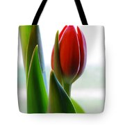 Red Tulip Day 1 Tote Bag