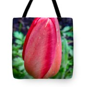 red tulip may  by Leif Sohlman Tote Bag