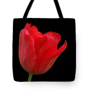 Red Tulip Open Tote Bag