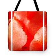 Red Tulip Up Close Trio Sample Tote Bag