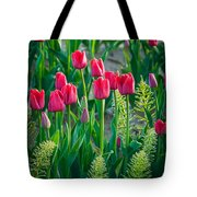 Red Tulips In Skagit Valley Tote Bag
