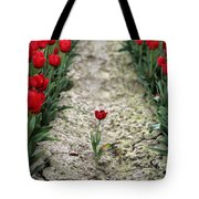 Red Tulips Tote Bag by Jim Corwin