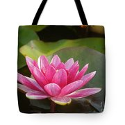 Red Water Lily 4 Tote Bag
