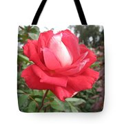 Red-white Rose Tote Bag