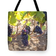 Red Wine Grapes Hanging On Grapevines Tote Bag
