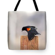 Red Wing Black Bird On Post Tote Bag
