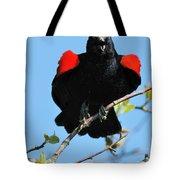 Red Wing Blackbird 1 Tote Bag