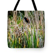 Red-winged Black Bird In The Cattails Tote Bag