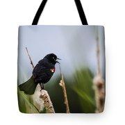 Red Winged Blackbird Singing Tote Bag
