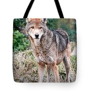 Red Wolf Alert Tote Bag