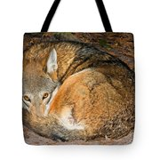 Red Wolf Tote Bag