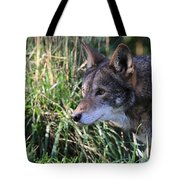 Red Wolf On The Hunt Tote Bag