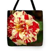 Red Yellow Rose Tote Bag