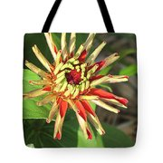Red Zinnia- Early Bloom Tote Bag