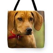 Redbone Coonhound - Man's Best Friend The Hound Dog Tote Bag