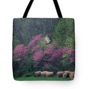Redbud - Fm000095 Tote Bag