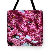 Redbud In Bloom Tote Bag