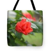Redbud Tote Bag